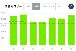 Fitbit消費カロリー