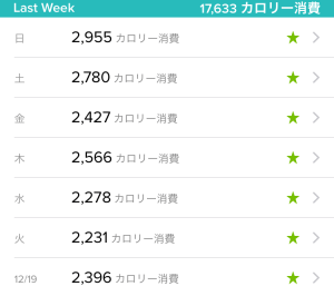Fitbit Charge 2 vs Withings Steel HR 一週間 消費カロリー 平均